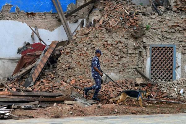 Photographie d'un policier népalais devant des décombres.