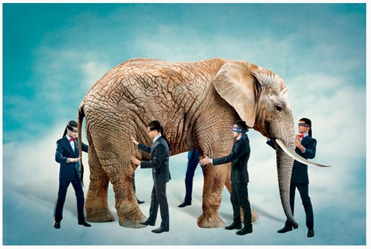 """Le proverbe chinois """"les aveugles tâtent un éléphant, chacun n'en touche qu'une partie"""" (mangren mo xiang, ge zhi yi duan 盲人摸象, 各執一端) décrit le fait de ne pas connaître une situation en profondeur, et dont chacun livre une interprétation différente. Il s'applique ici aux entreprises chinoises qui tentent de percer le marché indien des smartphones. Copie d'écran de Caixin, le 24 septembre 2015. (Crédit : Caixin)"""