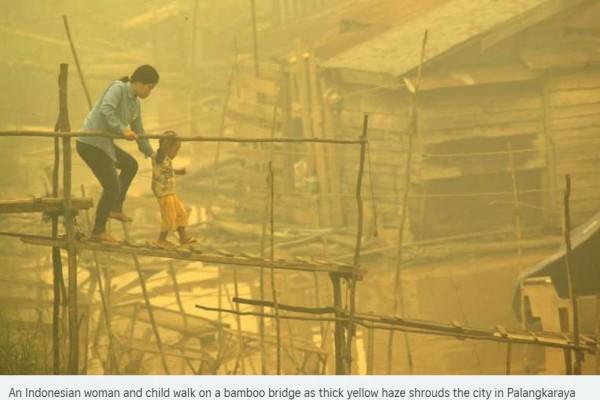 En Indonésie, la crise environnementale liée aux fumées toxiques pourrait bien se transformer en crise humanitaire. Copie d'écran du Straits Times, le 23 octobre 2015.