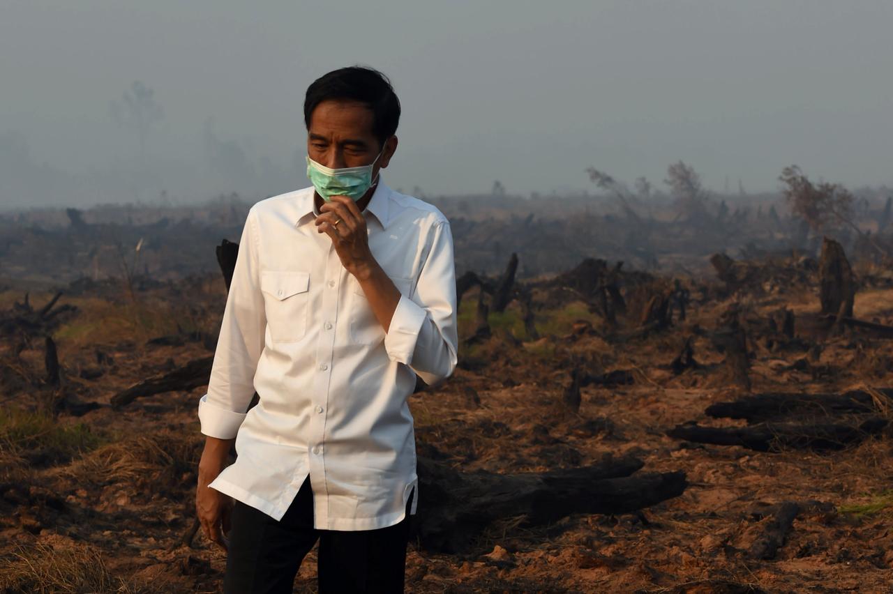 Au sud de Kalimantan (île de Bornéo), le Président indonésien Jokowi inspecte une tourbière après un incendie, le 23 septembre 2015. Crédit : ROMEO GACAD / AFP.