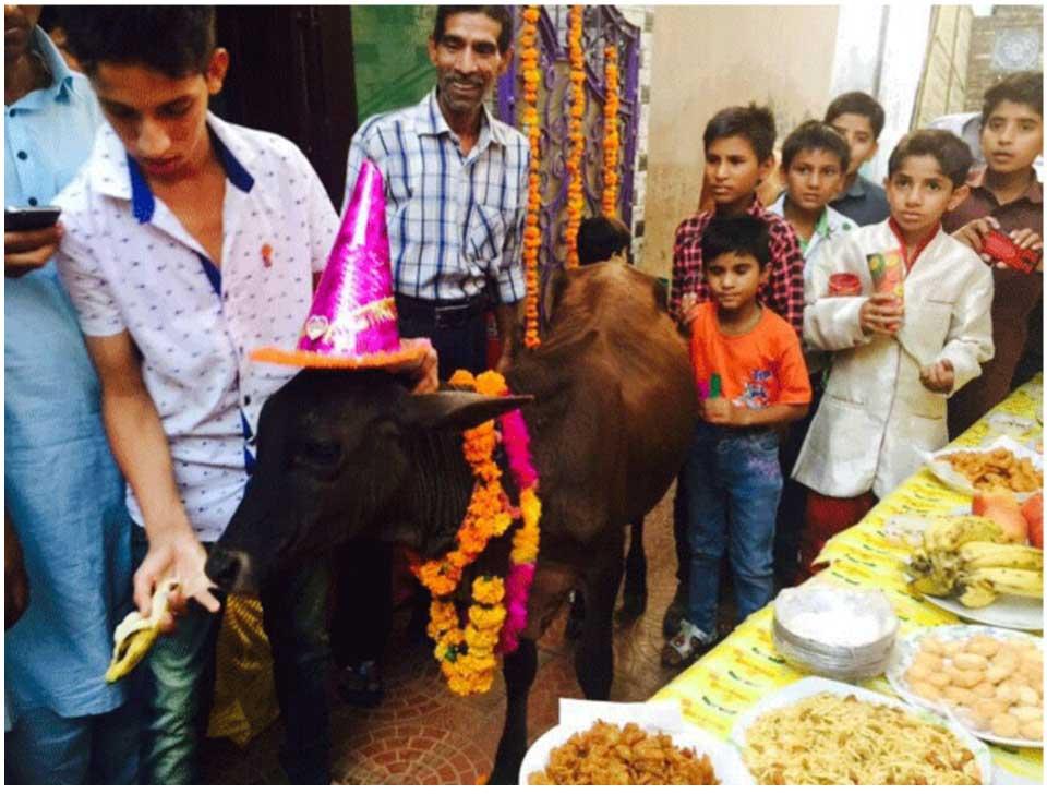 """Janmadina mubāraka ho"" जन्मदिन मुबारक हो (Joyeux anniversaire) ! Copie d'écran du Times of India, le 23 octobre 2015."