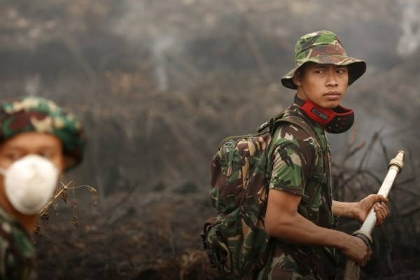 La sécheresse en Indonésie provoque des brasiers géants.