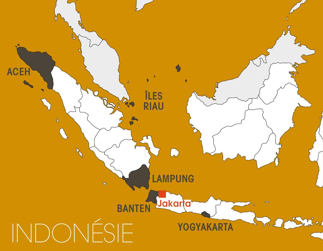 Le sultanat de Yogyakarta.
