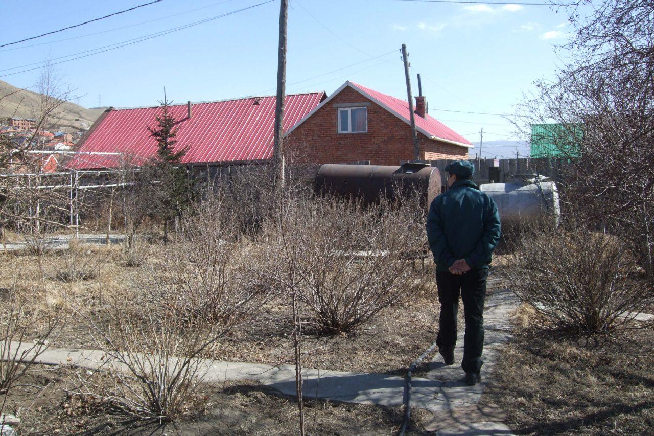 Les arbres jouent un rôle capital dans le jardin permaculturel d'Erdenechuluun, dans le quartier des yourtes à Oulan-Bator en Mongolie.