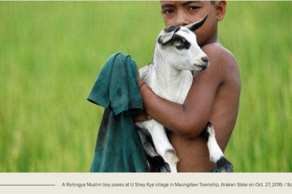 Le gouvernement birman a consenti à rouvrir partiellement le nord de l'Etat Rakhine au Programme alimentaire mondial. Copie d'écran de The Irrawaddy, le 8 novembre 2016.