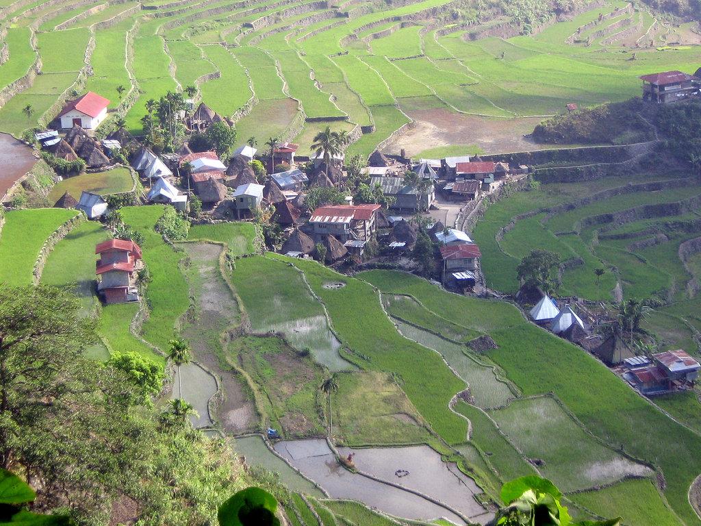 Aperçu du village de Batad perdu au milieu des rizières de Banaue inscrite au patrimoine mondial de l'humanité de l'Unesco.