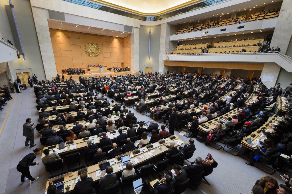 Le 23 mai 2016, l'assemblée mondiale de la santé rassemblait 3 000 délégués de ses 194 États-membres à Genève. (Crédits : AFP PHOTO / FABRICE COFFRINI)