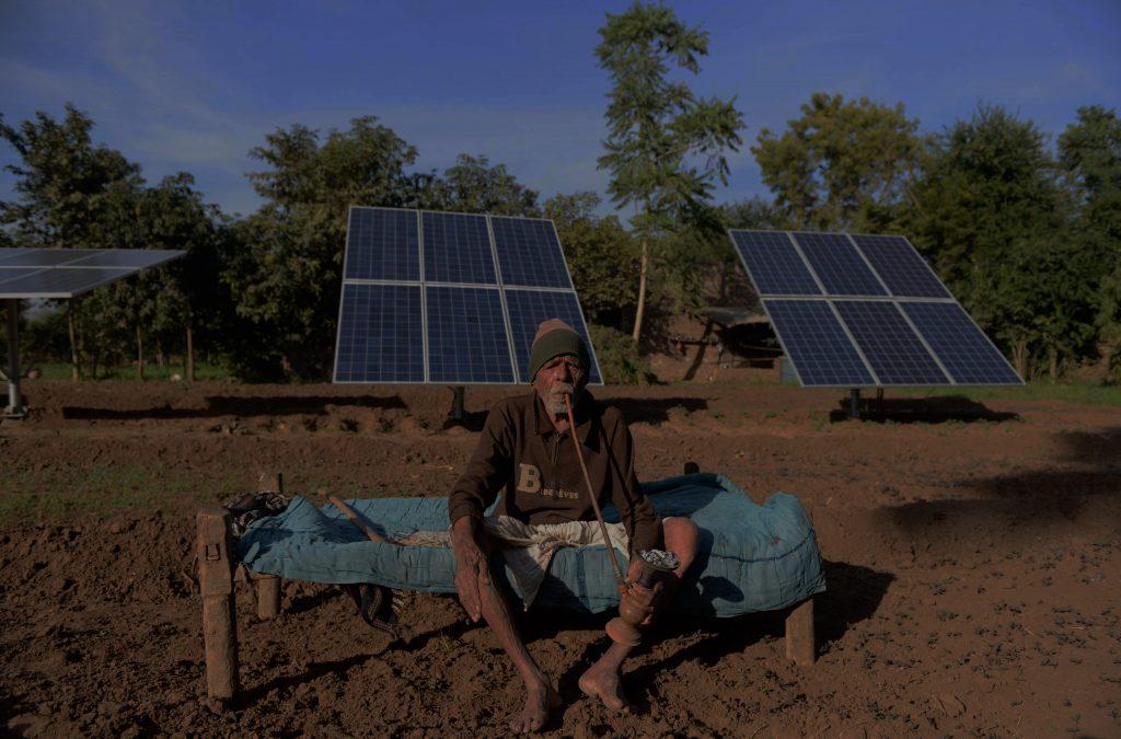 Inde : des panneaux solaires aux fruits pour réduire les coûts ? Image