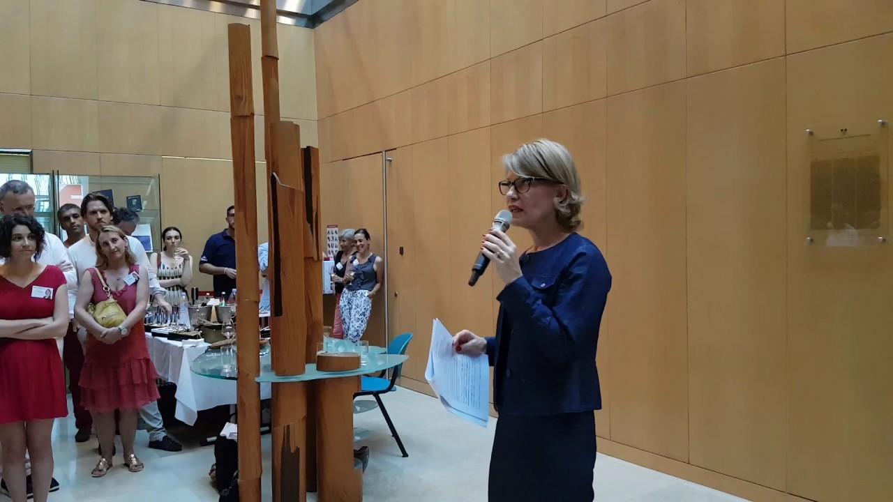 Anne Genetet lance sa campagne sous l'étiquette La République en Marche (LRM) lors d'une réunion à l'ambassade de France à Singapour le 20 mai 2017. (Source : Youtube)