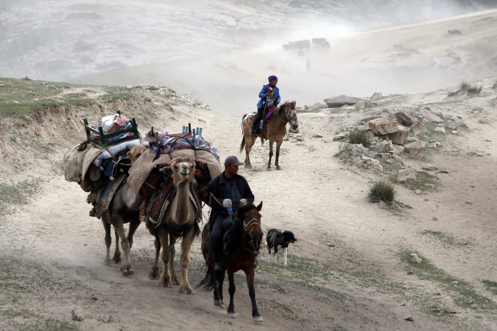 Des gardiens de troupeaux emmènent des chameaux dans leur transhumance vers les pâturages estivaux dans la région montagneuse de la préfecture d'Altay, dans la province chinoise du Xinjiang au nord-ouest du pays, le 5 juin 2016. (Crédits : Zhang wencheng / Imaginechina / via AFP)