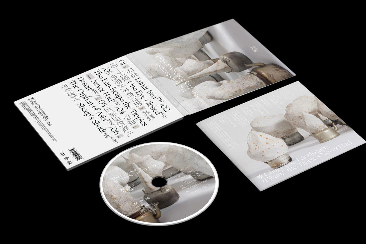 """Digipack de l'album """"The landscape the tropics never had"""" du goupe chinois Chui Wan. Design par Wu Qingyu. (Crédits : Wu Qingyu)"""