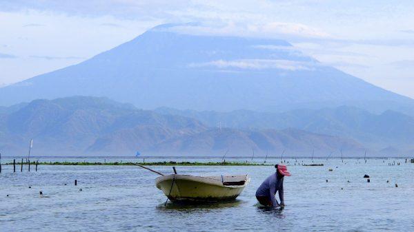 L'Agung, vu depuis l'île voisine de Nusa Lembongan. (Crédit : Tom Eisenchteter)