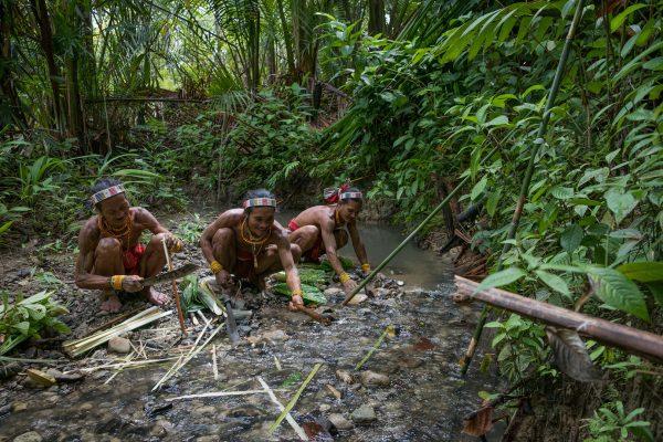 Chamanes d'une tribu indigène des îles Mentawai en Indonésie, les Sikereis prennent de l'eau de rivière pour fabriquer les médicaments aux plantes pour leurs patients. (Copyright : Danishwara Nathaniel, 2017)
