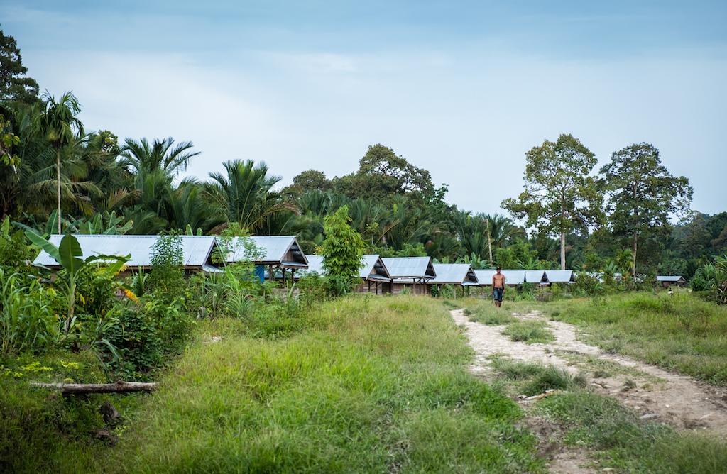 Rangée de maisons le long de la route dans une zone typique de relogement créée par le gouvernement. Les toits préfabriqués en acier laissent entrer la chaleur tropical au contraire des Umas traditionnelles en fibre de paille. (Copyright : Danishwara Nathaniel, 2017)