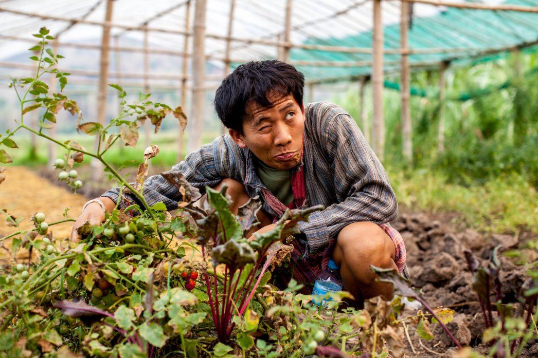 """Lautlee, le jeune Hmong entrepreneur dans sa ferme """"Living Land""""."""