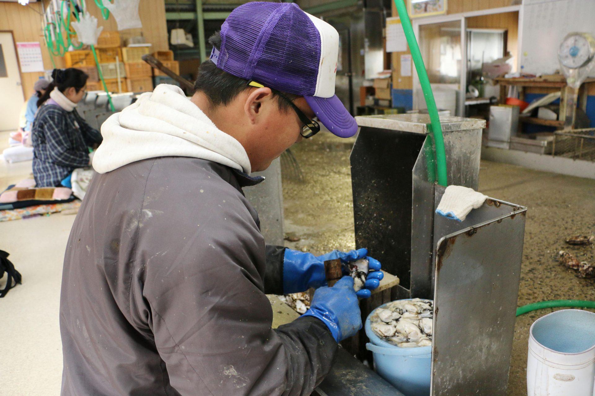 """Un """"stagiaire technique"""" chinois dans une usine de transformation d'huîtres à Hiroshima en mars 2015. (Source : Japan Times)"""