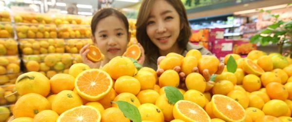 Le 11 novembre 2018, la Corée du Sud a envoyé quelque 20 000 cartons de mandarines de l'île de Jeju à la Corée du Nord, en réponse à l'envoi gracieux de champignons de pin par Pyongyang le 20 septembre 2018. (Source : Korea Times)