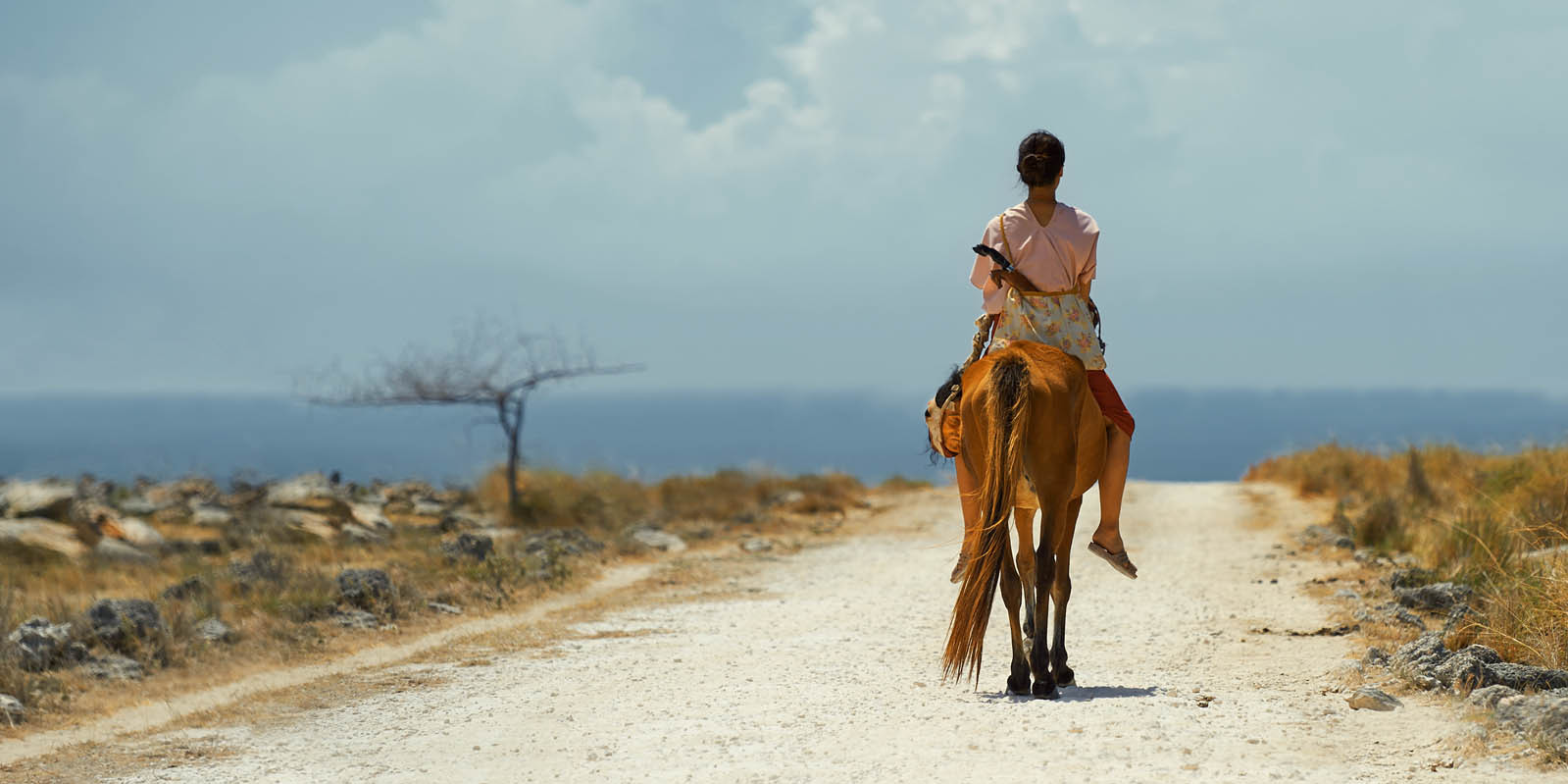 "Extrait du film indonésien ""Marlina la tueuse, en quatre actes"" de la réalisatrice Mouly Surya. (Source : Culture Box)"
