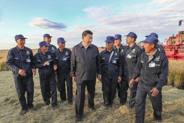 Le président chinois Xi Jinping avec des travailleurs agricoles à la fermme de Qixing, dans la province du Heilongjiang au nord-est de la Chine, le 25 septembre 2018. (Source : China Daily)
