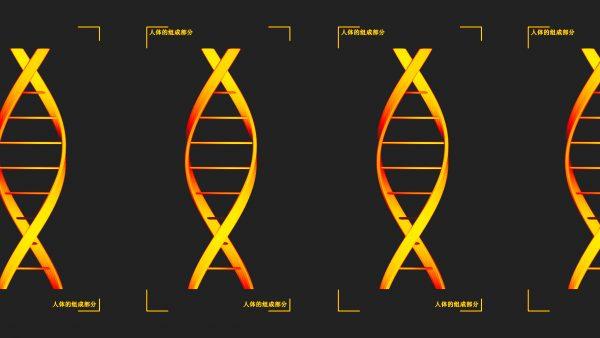"""""""En Chine, les données médicales et génétiques sont considérées comme appartenant de facto à l'État. Les acteurs locaux ont donc potentiellement accès à une base de données très large avec peu de contraintes légales."""" (Source : NYT)"""