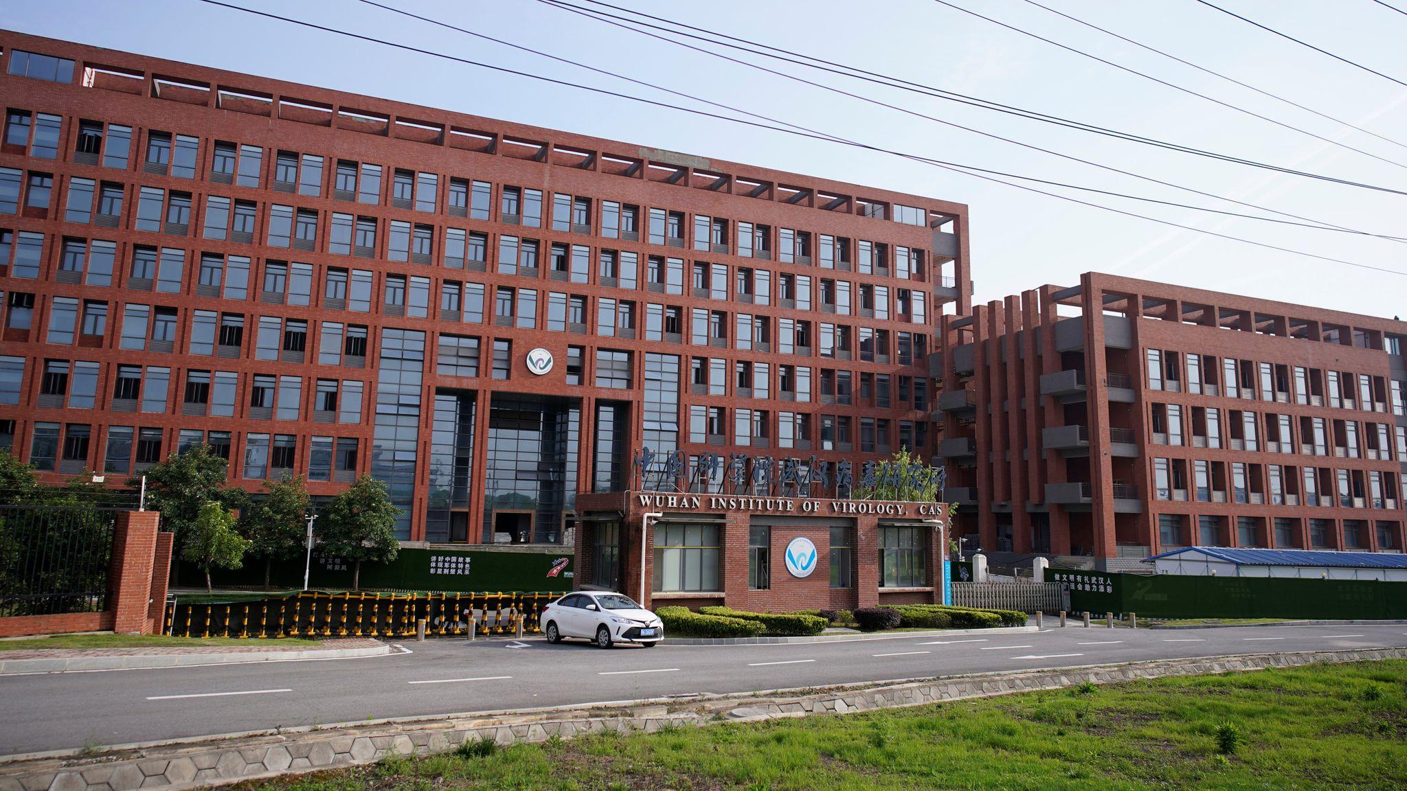 L'institut de virologie de Wuhan a-t-il été le théâtre d'un accident de laboratoire à l'origine de la pandémie de Covid-19 ? C'est la question relancée par la lettre du 30 avril adressée par un groupe de scientifiques internationaux à l'OMS. (Source : Sky News)