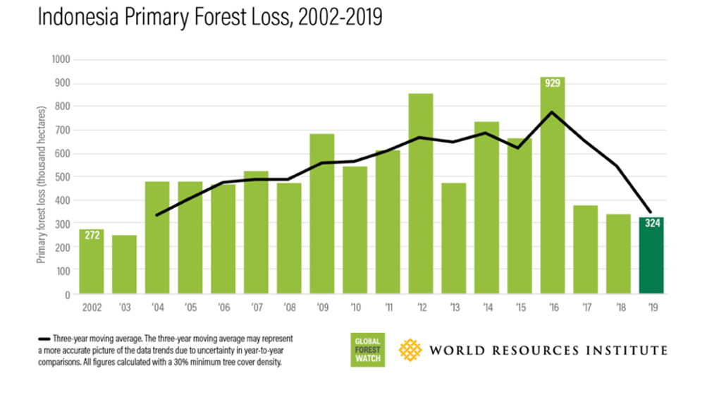 """Perte de forêts primaires en Indonésie, 2012-2019. (Source : Elizabeth Dow Goldman, Mikaela Weisse, """"We Lost a Football Pitch of Primary Rainforest Every 6 Seconds in 2019"""", in Global Forest Watch Blog, 2019)"""